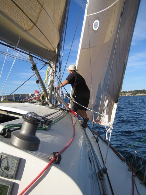 Headsail (on port tack on this picture)
